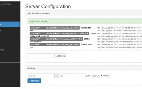 Buru SFTP Server Review