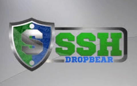Dropbear SSH Review